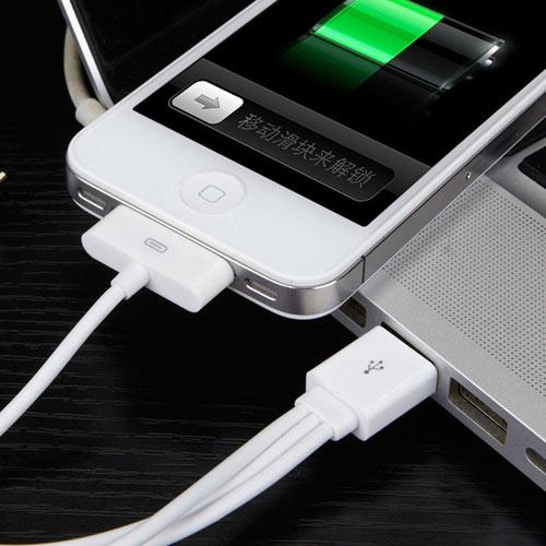 4 в 1 для Samsung Galaxy Tab 30pin+Apple 30pin+Apple 8-pin+MicroUSB Cable for iPhone 5 4 4S For iPad. Купить с доставкой в Киев, Одесса, Николаев, Черкассы, Хмельницкий, ЧЕрнигов, Мариуполь.